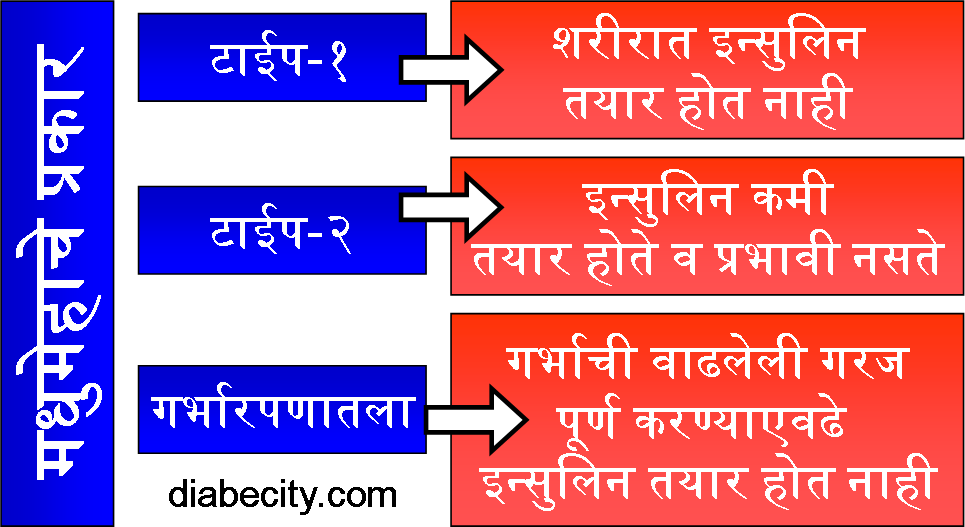 Types Of Diabetes (Marathi) diabecity.com